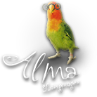 alma languages logo